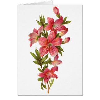 Sprig of Pink Flowers Card