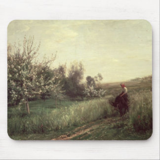 Spring, 1857 mouse pad