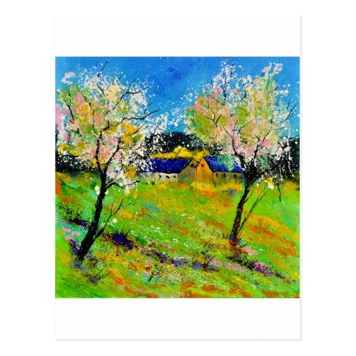 spring 663120big.jpg postcard