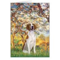 Spring- American Foxhound Card