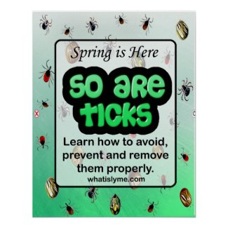 Spring and Tick Lyme Disease Prevention Poster