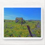 Spring At High Prairie House Mousepad