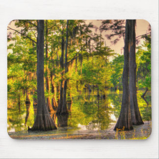 Spring At The Bayou Mouse Pad