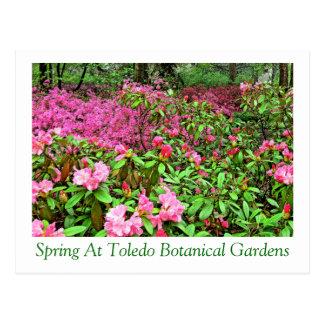 """SPRING AT TOLEDO BOTANICAL GARDENS"" POSTCARD"