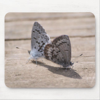 Spring Azure Mouse Pad