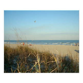Spring Beach Scene No.3 Poster