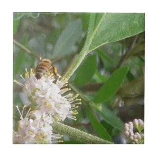 Spring Bee Photo Tile