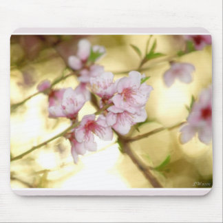 Spring Begins Mouse Pad