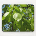 Spring Birch Leaves Green Nature Scene Mouse Pad