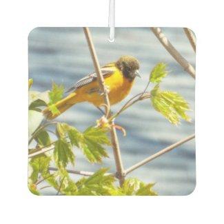 Spring bird air freshener