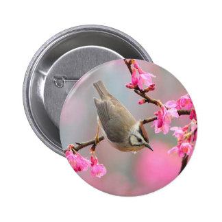 Spring Bird Button