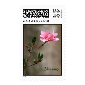 Spring Blessings Postage Stamp