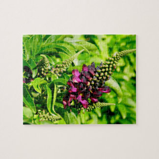 Spring Bloom Jigsaw Puzzle