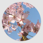 spring bloom stickers