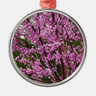 Spring Blooming Eastern Redbud Blossoms Metal Ornament