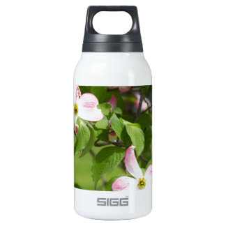 Spring Blooming Pink Dogwood Blossoms SIGG Thermo 0.3L Insulated Bottle