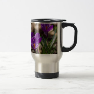 Spring Blooming Purple Crocus Flowers Travel Mug
