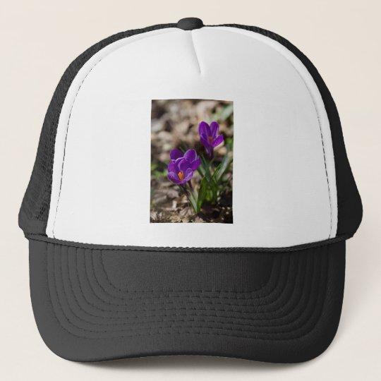 Spring Blooming Purple Crocus Flowers Trucker Hat