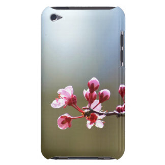 Spring Blooms Beauty iPod Touch Cover