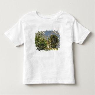 Spring Blossom, 1908 Toddler T-shirt