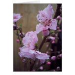 Spring Blossom Blank Note Card