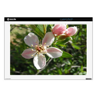 Spring Blossom Laptop Decal