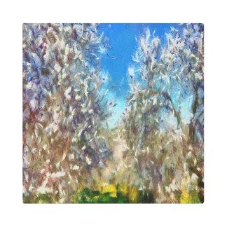Spring Blossom Metal Photo Print
