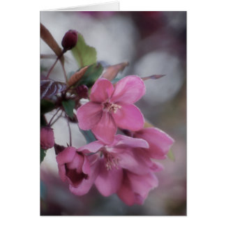 Spring Blossoms ~ A Note Card by KNairn