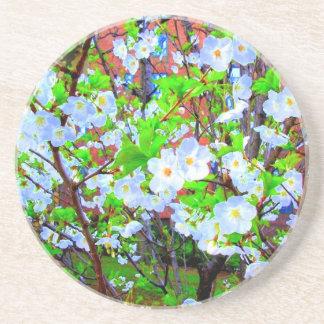 'Spring Blossoms' Coaster