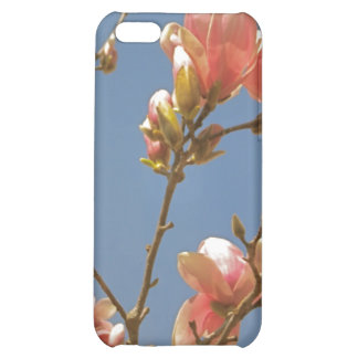 Spring Blossoms iPhone 5C Case