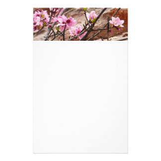 Spring Blossoms on Zion Red Rocks Stationery