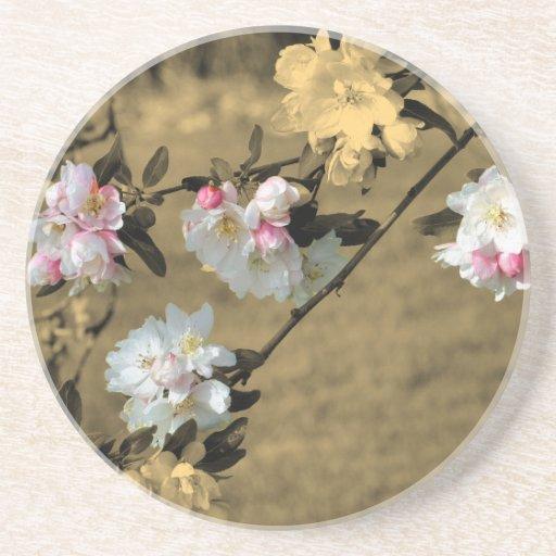 Spring Blossoms Sepia Floral Coaster