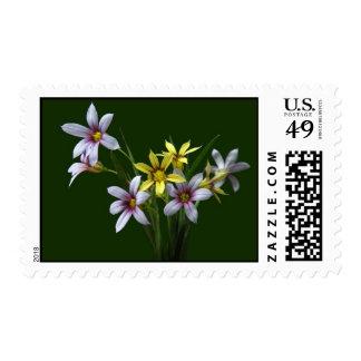 Spring Blue-Eyed Wildflower Postage Stamps