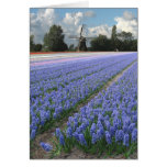 Spring Blue Hyacinth Flowers Field Windmill Greeting Card