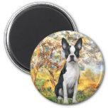Spring - Boston Terrier #1 2 Inch Round Magnet