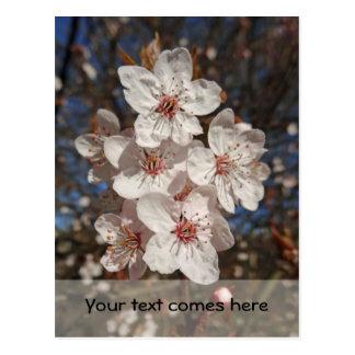 spring bouquet postcard