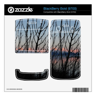 Spring Branches in Sunset BlackBerry Bold Decal
