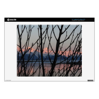 """Spring Branches in Sunset 14"""" Laptop Decal"""