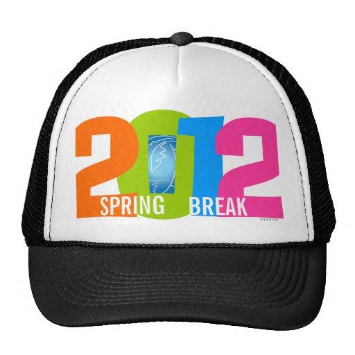 Spring Break 2012 Color Number Hat