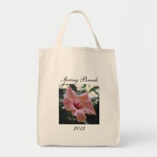 SPRING BREAK 2013- bag