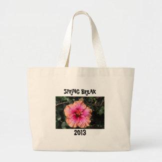 SPRING BREAK 2013 - bag