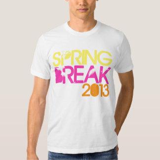SPRING BREAK 2013 T-Shirt