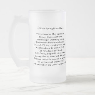 Spring Break Stein -Frosted Glass
