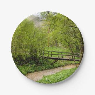 Spring Bridge, Lush Green Landscape Photograph Paper Plate