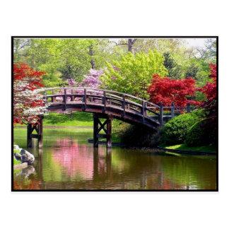 Spring Bridge Postcard