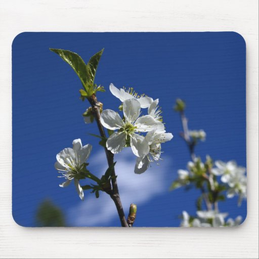 Spring Buds Mouse Pad