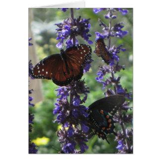 Spring Butterflies Card