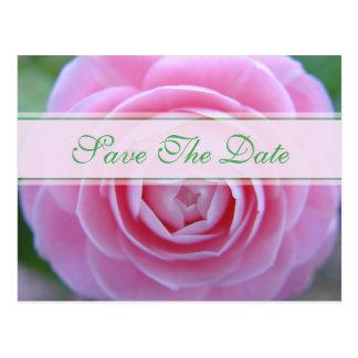 Spring Camellia Save The Date Wedding Postcard