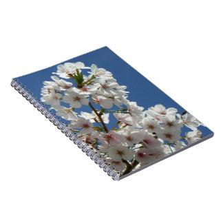 Spring cherry tree blossom spiral note book