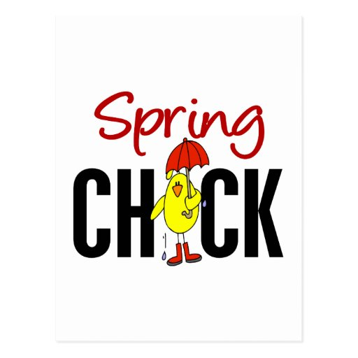 Spring Chick Post Card